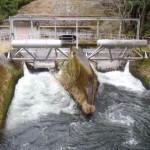 アミル型ネルピックゲートという電気を使わない水門